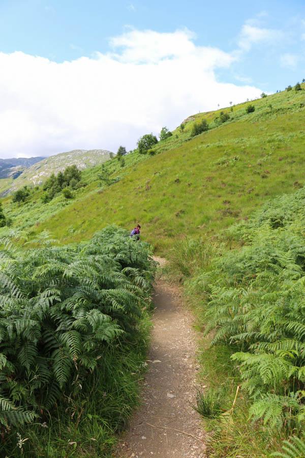 road trip en Ecosse - Viaduc de Glenfinnan