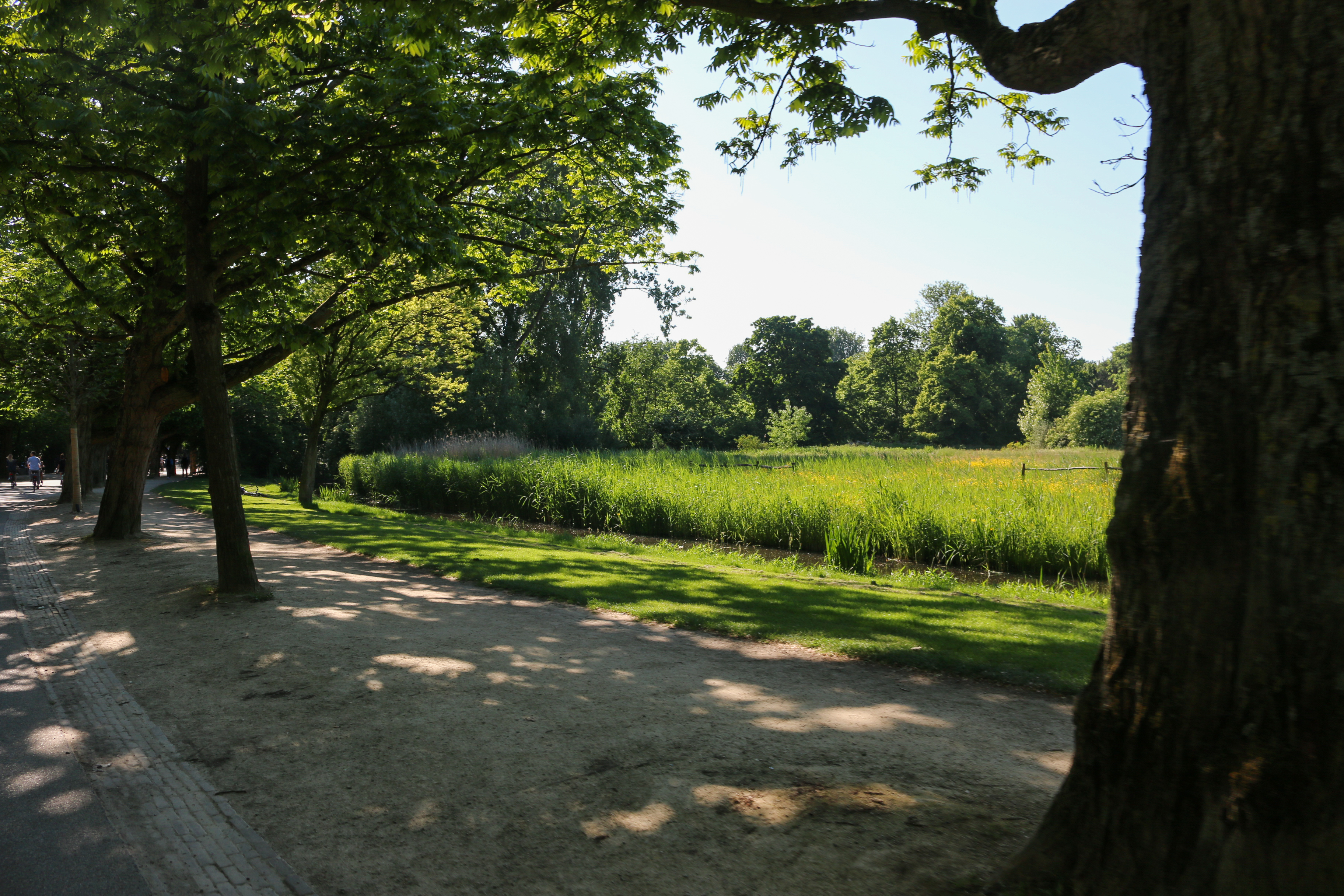 Amsterdam en 3 jours : le vondelpark