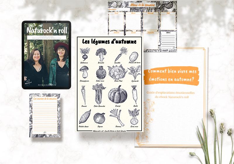 naturock'n roll guide naturopathie saison recettes vegan